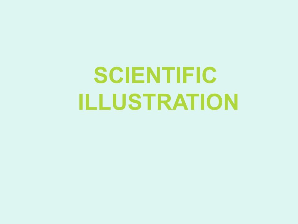 What is Scientific Illustration.