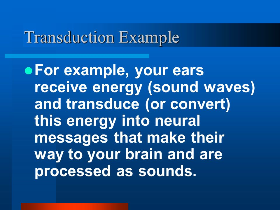 Transduction Example For example, your ears receive energy (sound waves) and transduce (or convert) this energy into neural messages that make their w