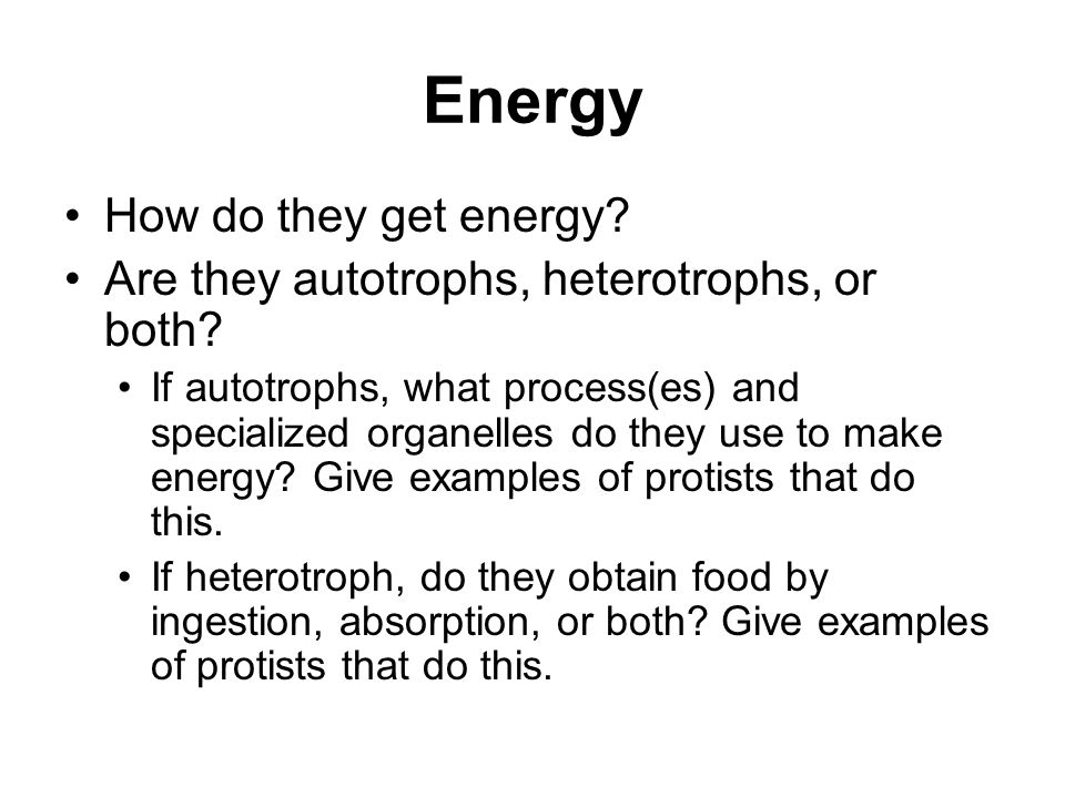 Energy How do they get energy? Are they autotrophs, heterotrophs, or both? If autotrophs, what process(es) and specialized organelles do they use to m