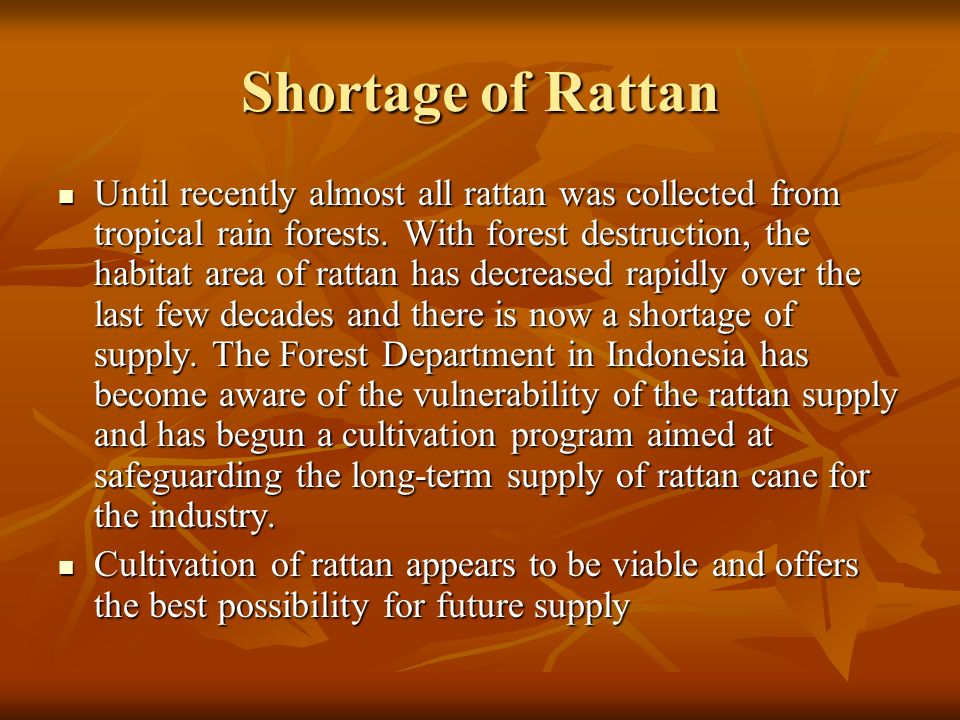 Shortage of Rattan Until recently almost all rattan was collected from tropical rain forests. With forest destruction, the habitat area of rattan has