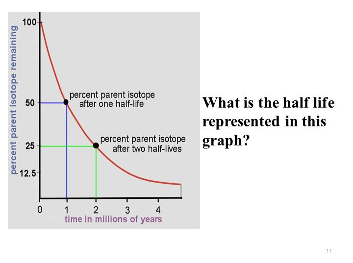 What is the half life represented in this graph? 11