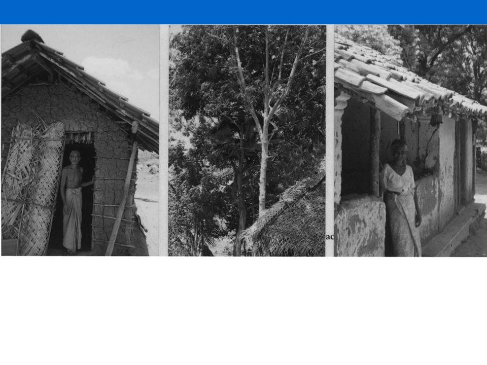 Suicides in Sri Lanka