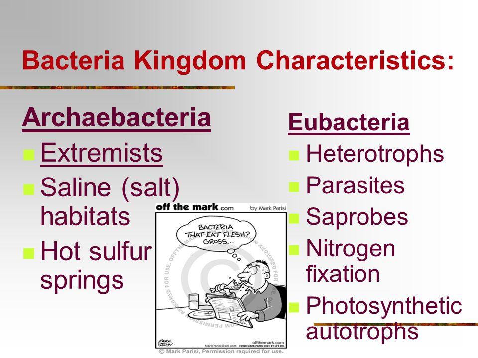 6 Major Kingdoms: 1. Archaebacteria 2. Eubacteria Domain Eukaryote 1. Protista 2. Fungi 3. Planta 4. Animalia 1. prokaryotes 2. prokaryotes 3. Unicell