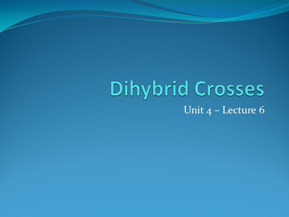 Unit 4 – Lecture 6
