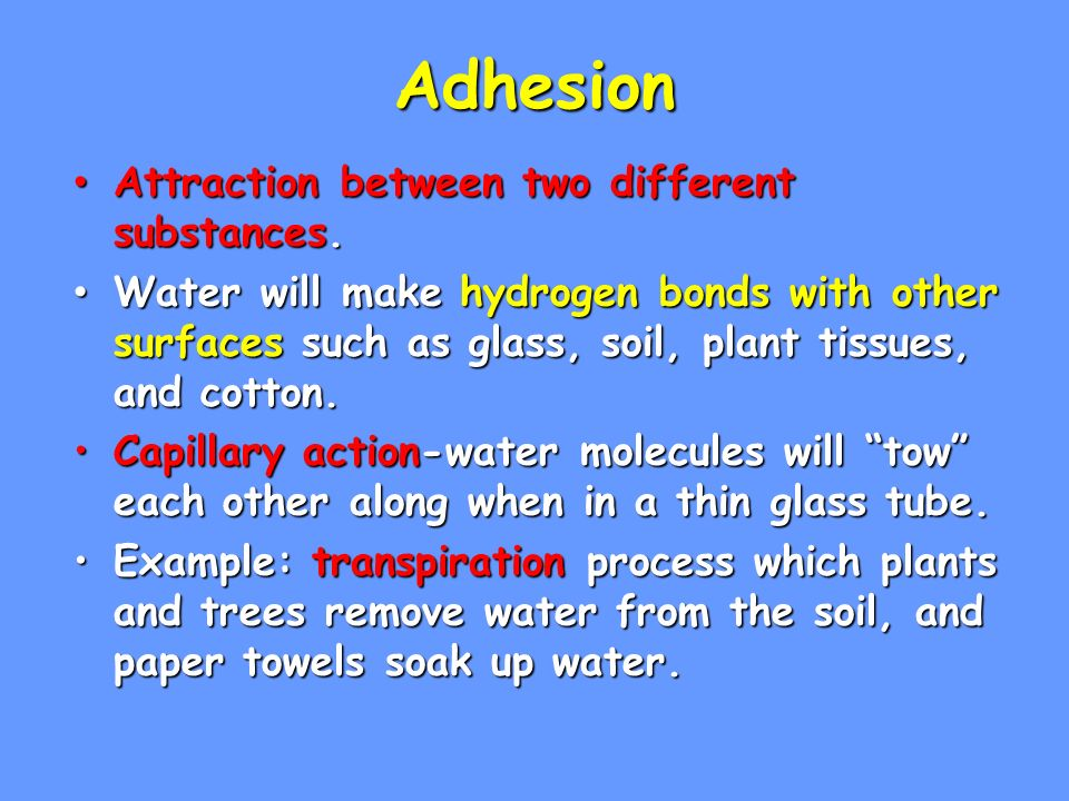 Adhesion Attraction between two different substances. Attraction between two different substances. Water will make hydrogen bonds with other surfaces