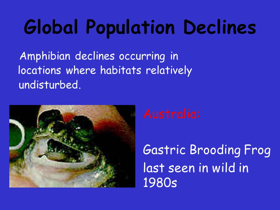 Global Population Declines Increasing ultraviolet radiation Pollution by chemicals Acid rain Pathogens Parasites Introduction of non-native species