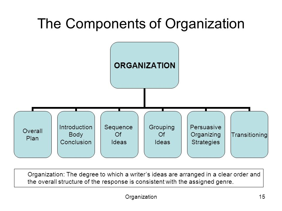 Organization15 The Components of Organization ORGANIZATION Overall Plan Introduction Body Conclusion Sequence Of Ideas Grouping Of Ideas Persuasive Or