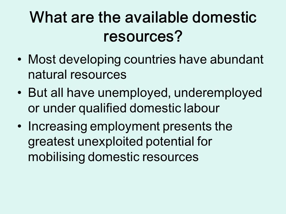 What are the available domestic resources.