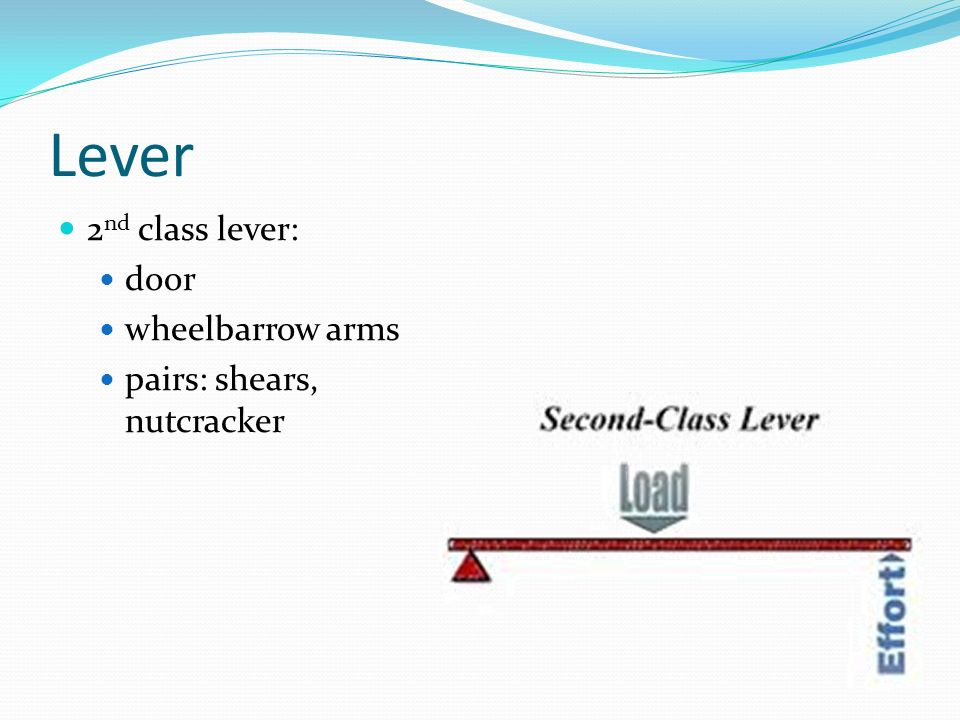 Lever 2 nd class lever: door wheelbarrow arms pairs: shears, nutcracker