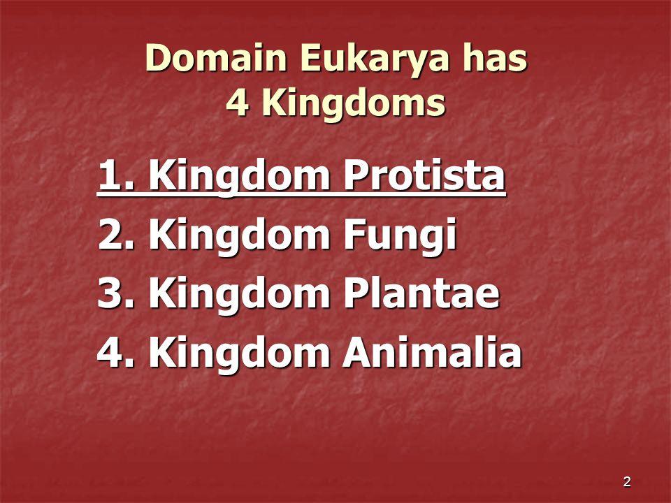2 Domain Eukarya has 4 Kingdoms 1. Kingdom Protista 2. Kingdom Fungi 3. Kingdom Plantae 4. Kingdom Animalia