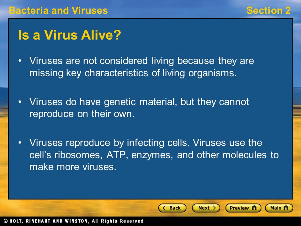 Bacteria and VirusesSection 2 Is a Virus Alive? Viruses are not considered living because they are missing key characteristics of living organisms. Vi