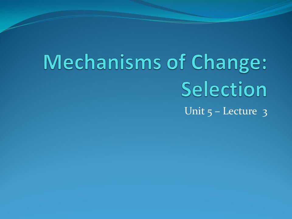 Unit 5 – Lecture 3