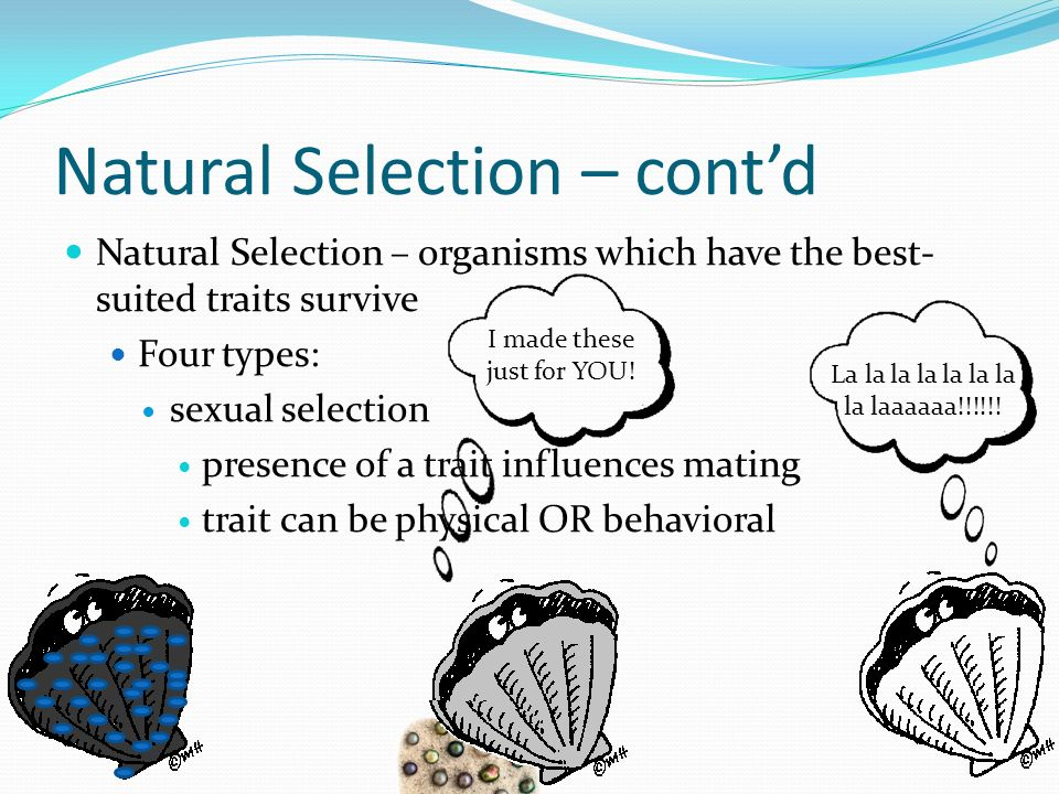 Natural Selection – contd Natural Selection – organisms which have the best- suited traits survive Four types: sexual selection presence of a trait in