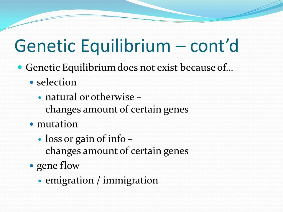 Genetic Equilibrium – contd Genetic Equilibrium does not exist because of… selection natural or otherwise – changes amount of certain genes mutation loss or gain of info – changes amount of certain genes gene flow emigration / immigration