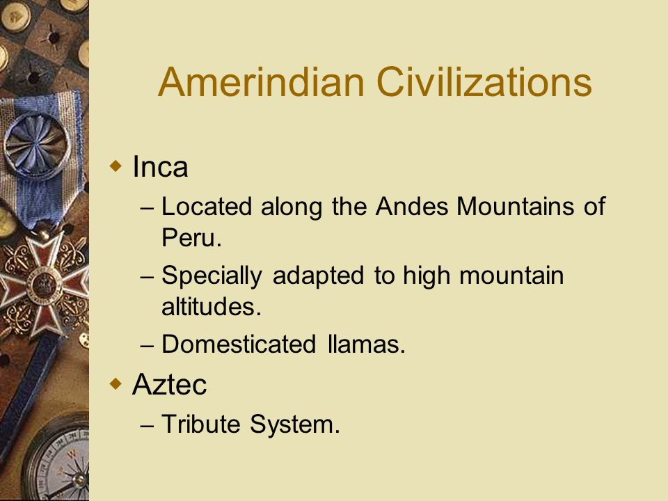 Amerindian Civilizations Inca – Located along the Andes Mountains of Peru. – Specially adapted to high mountain altitudes. – Domesticated llamas. Azte