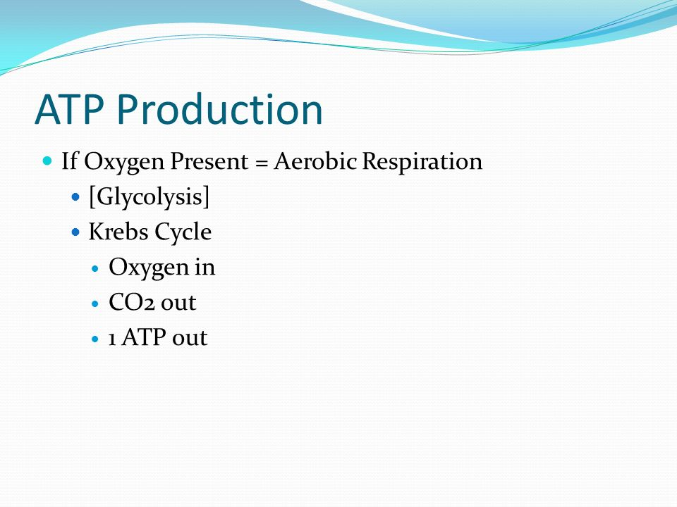 ATP Production If Oxygen Present = Aerobic Respiration [Glycolysis] Krebs Cycle Oxygen in CO2 out 1 ATP out