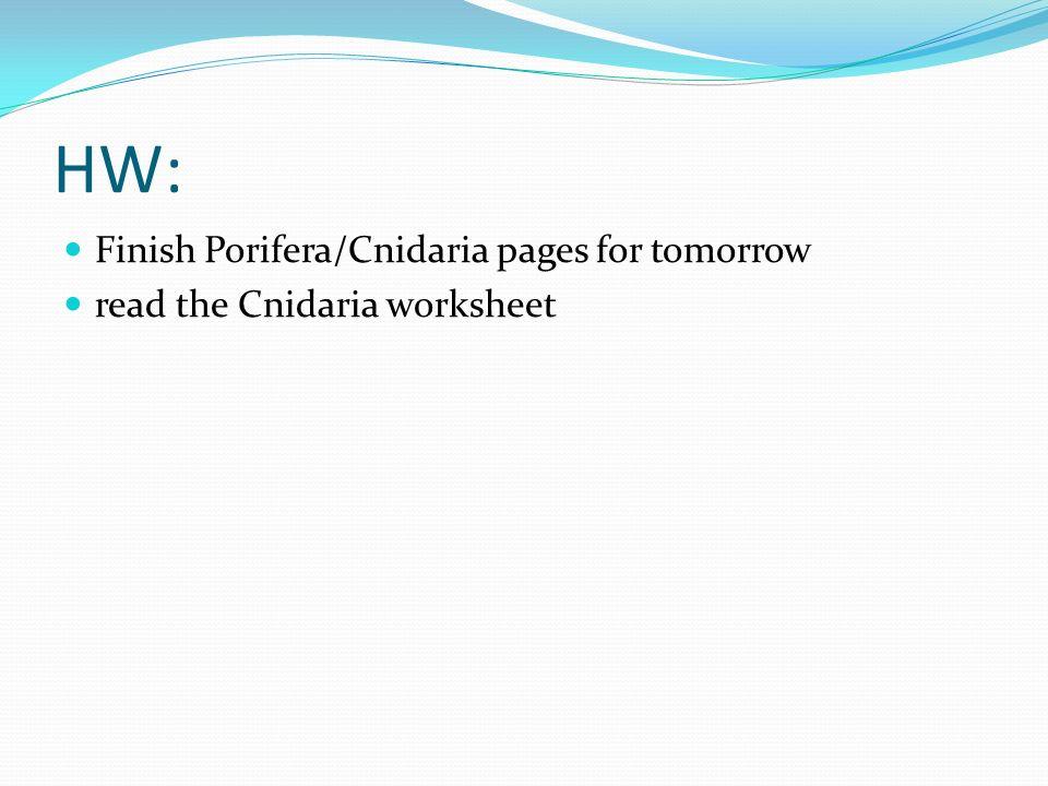 HW: Finish Porifera/Cnidaria pages for tomorrow read the Cnidaria worksheet