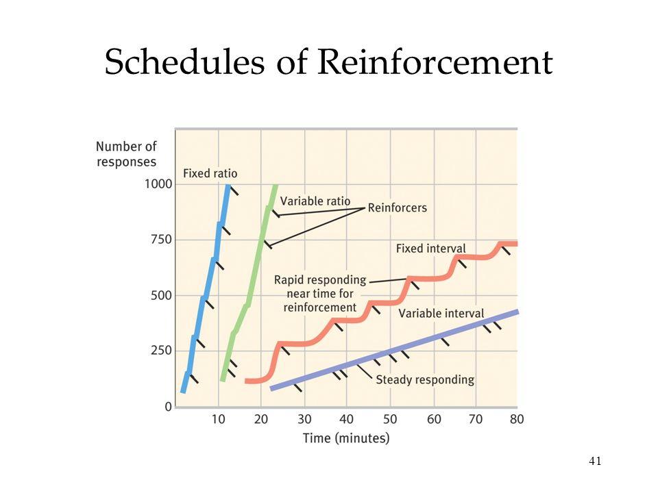 41 Schedules of Reinforcement