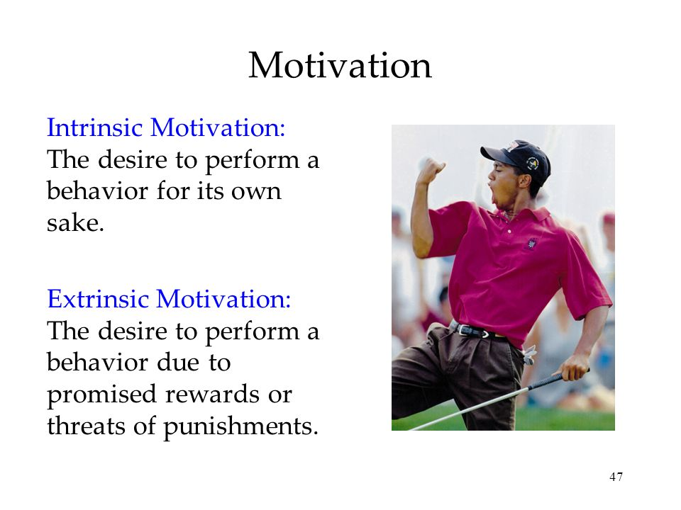 47 Motivation Intrinsic Motivation: The desire to perform a behavior for its own sake. Extrinsic Motivation: The desire to perform a behavior due to p