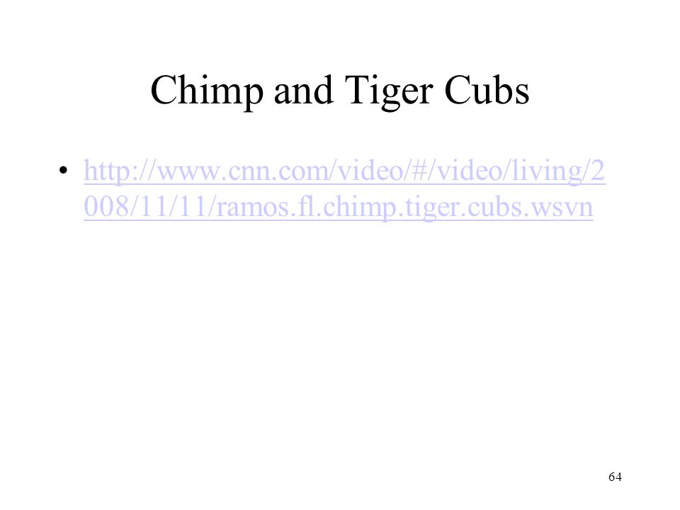 64 Chimp and Tiger Cubs http://www.cnn.com/video/#/video/living/2 008/11/11/ramos.fl.chimp.tiger.cubs.wsvnhttp://www.cnn.com/video/#/video/living/2 00