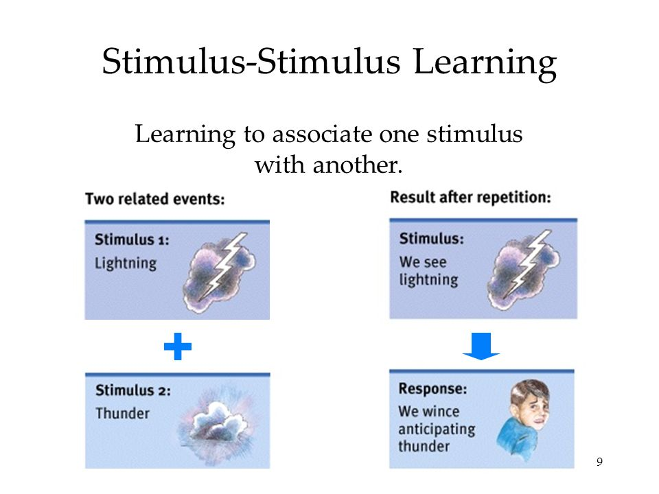 9 Stimulus-Stimulus Learning Learning to associate one stimulus with another.