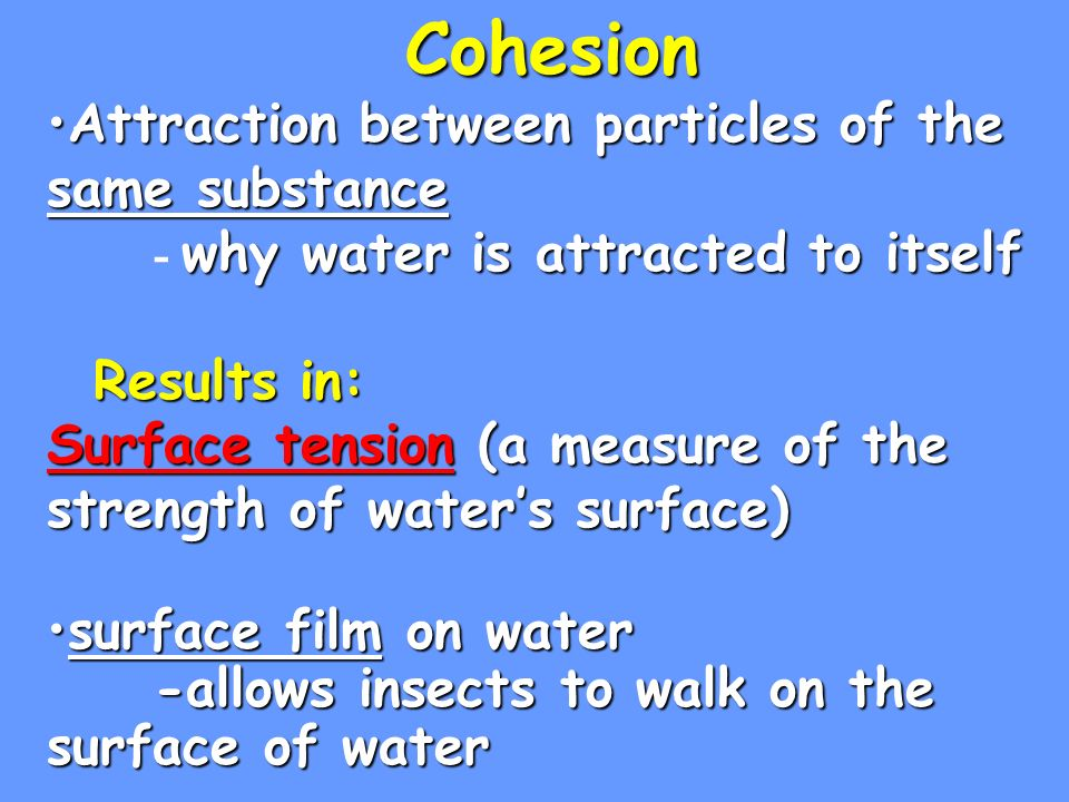 Cohesion Attraction between particles of the same substanceAttraction between particles of the same substance why water is attracted to itself - why water is attracted to itself Results in: Surface tension (a measure of the strength of waters surface) Results in: Surface tension (a measure of the strength of waters surface) surface film on watersurface film on water -allows insects to walk on the surface of water