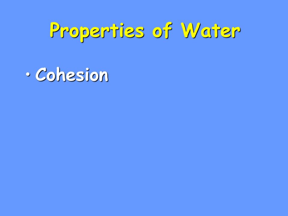Properties of Water CohesionCohesion