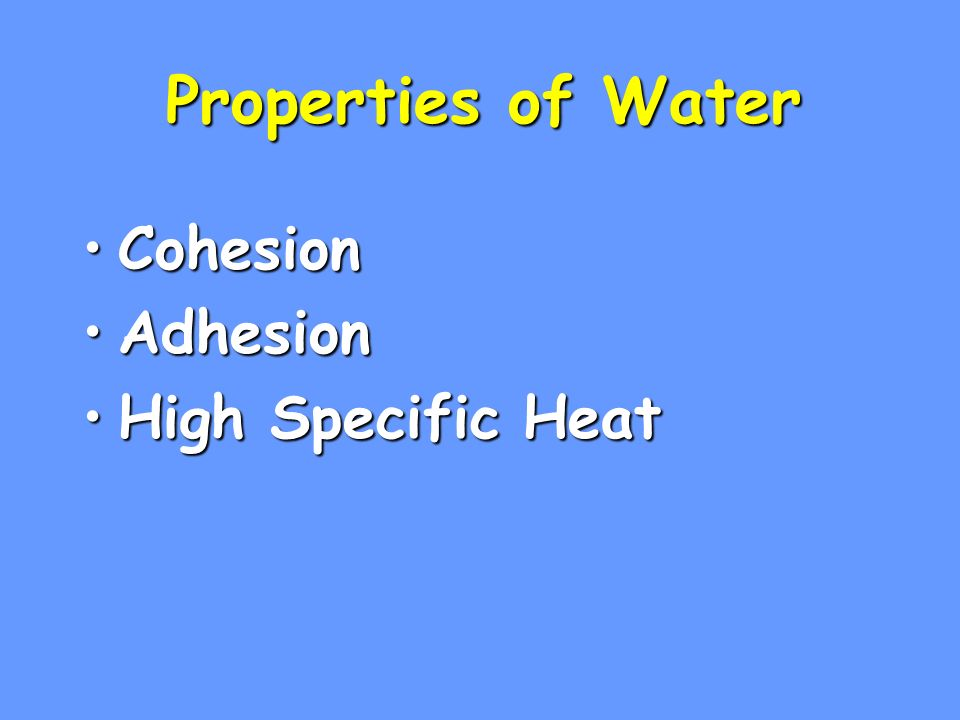 Homeostasis Ability to maintain a steady state despite changing conditionsAbility to maintain a steady state despite changing conditions Water is important to this process because:Water is important to this process because: a.