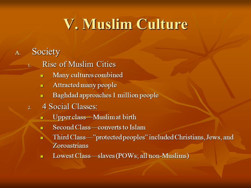 V. Muslim Culture A. Society 1. Rise of Muslim Cities Many cultures combined Many cultures combined Attracted many people Attracted many people Baghda