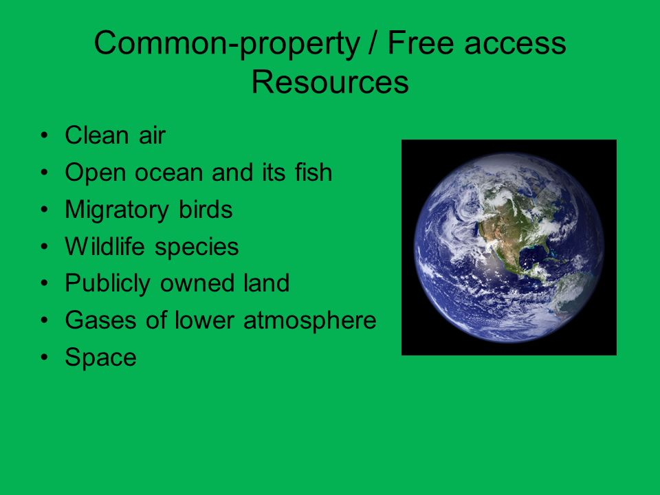 Common-property / Free access Resources Clean air Open ocean and its fish Migratory birds Wildlife species Publicly owned land Gases of lower atmosphe