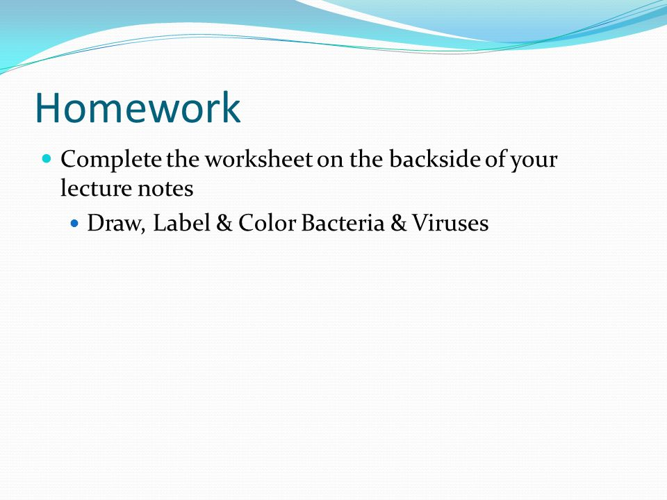 Homework Complete the worksheet on the backside of your lecture notes Draw, Label & Color Bacteria & Viruses