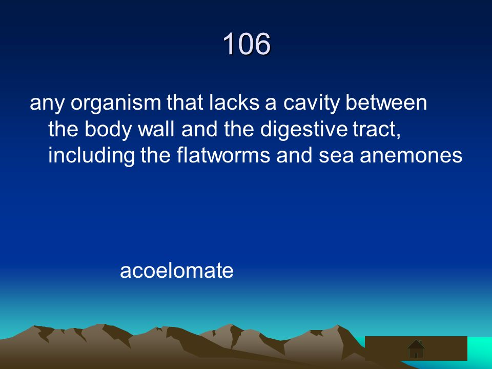 106 any organism that lacks a cavity between the body wall and the digestive tract, including the flatworms and sea anemones acoelomate