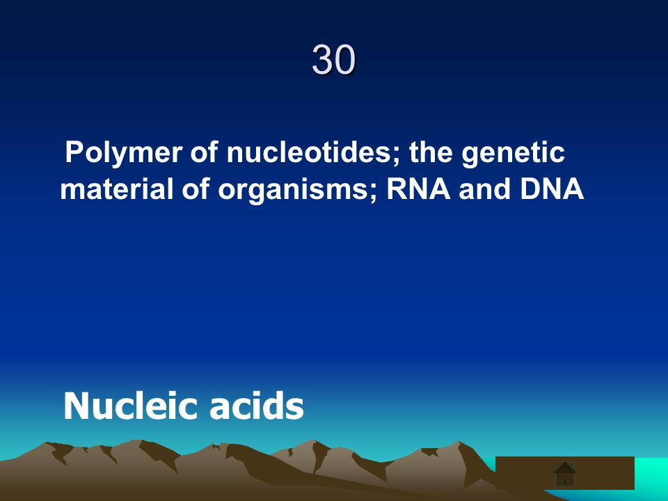 30 Polymer of nucleotides; the genetic material of organisms; RNA and DNA Nucleic acids