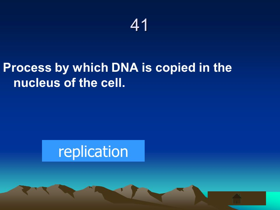 41 Process by which DNA is copied in the nucleus of the cell. replication