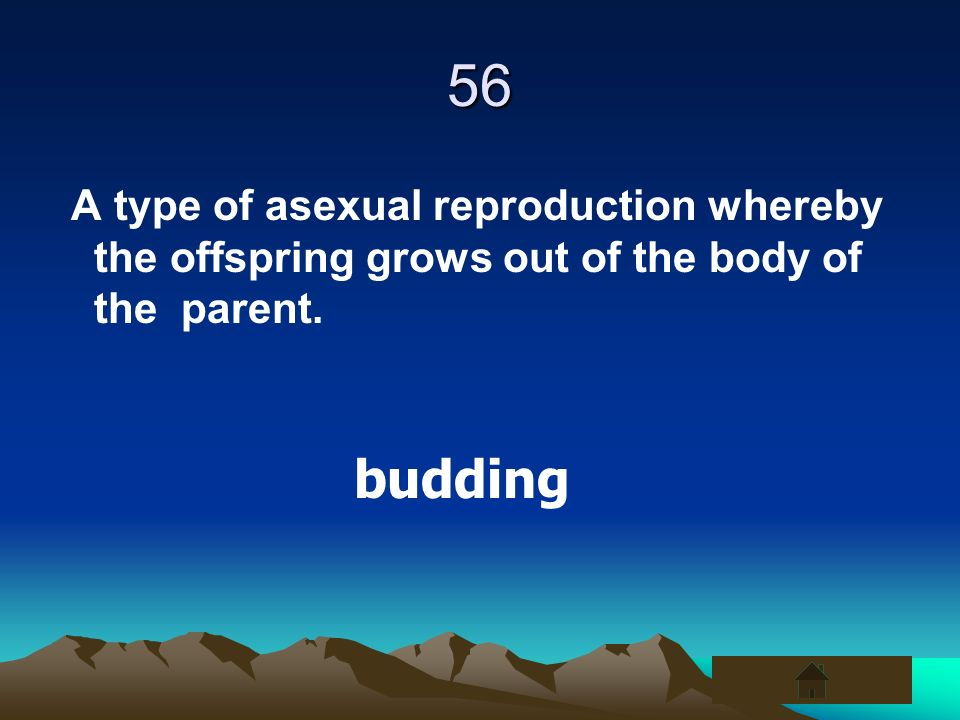 56 A type of asexual reproduction whereby the offspring grows out of the body of the parent. budding
