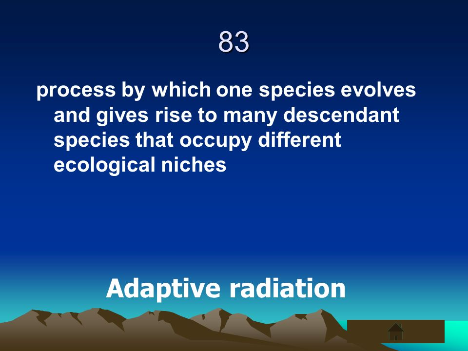 83 process by which one species evolves and gives rise to many descendant species that occupy different ecological niches Adaptive radiation
