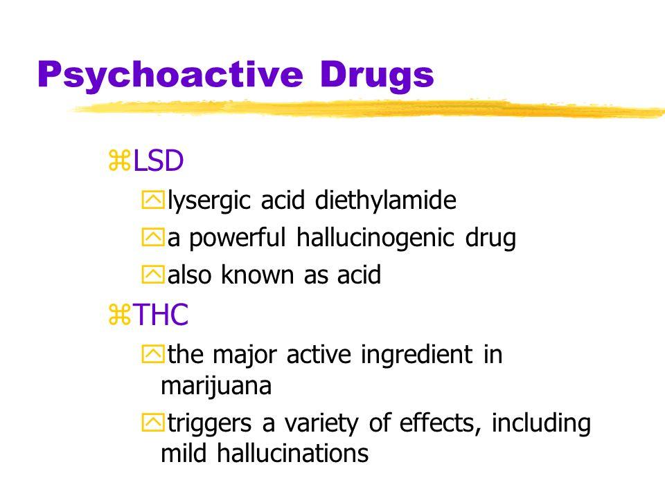 Cocaine Euphoria and Crash