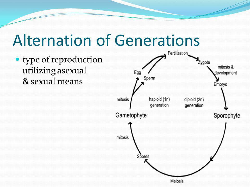 Alternation of Generations type of reproduction utilizing asexual & sexual means