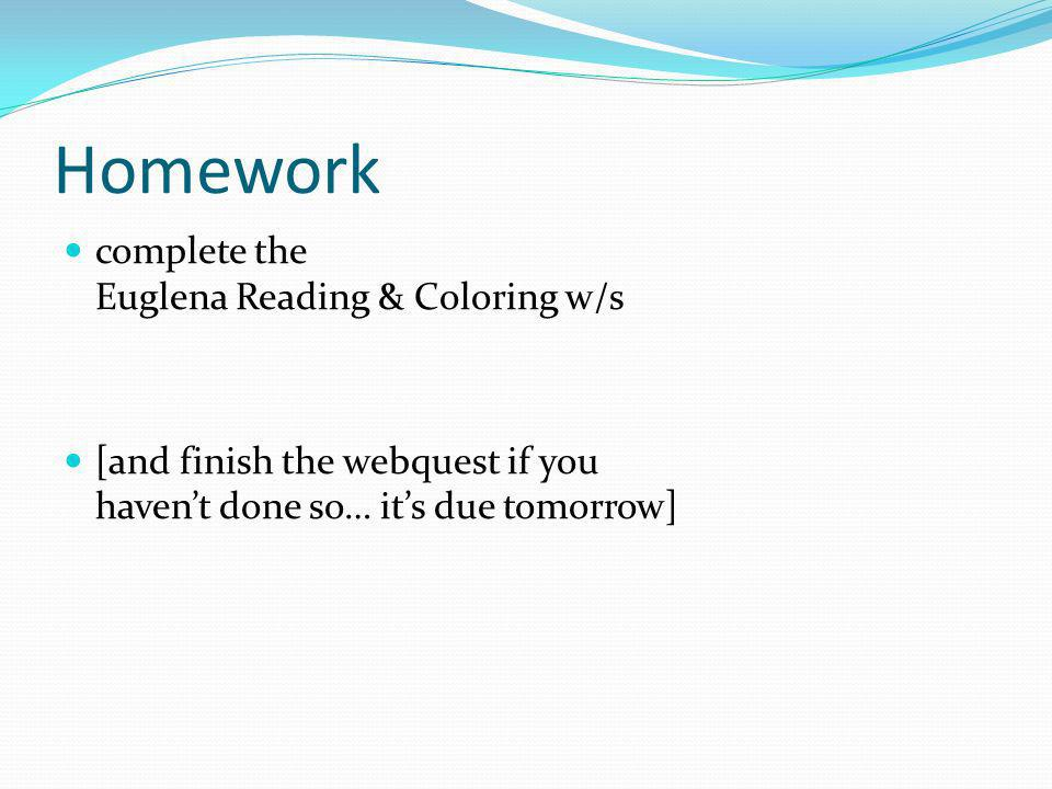 Homework complete the Euglena Reading & Coloring w/s [and finish the webquest if you havent done so… its due tomorrow]
