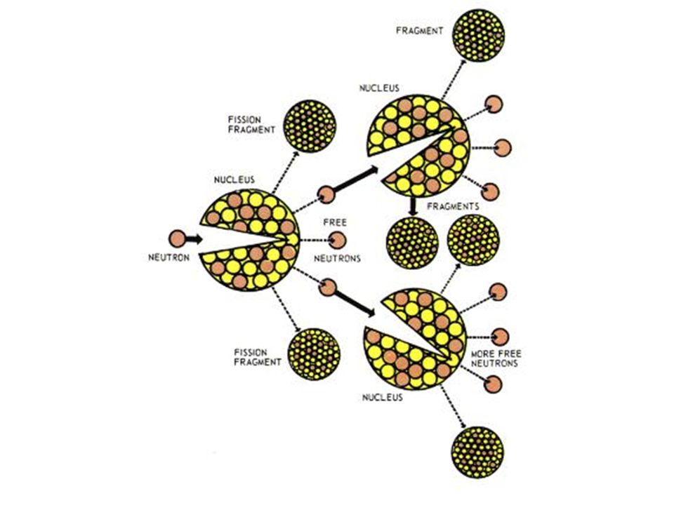 Nuclear Processes Fission –The splitting of a large, unstable nucleus into two or more stable nuclei –Scientists can cause fission by injecting a neut