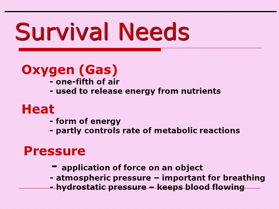 Oxygen (Gas) - one-fifth of air - used to release energy from nutrients Heat - form of energy - partly controls rate of metabolic reactions Pressure - application of force on an object - atmospheric pressure – important for breathing - hydrostatic pressure – keeps blood flowing Survival Needs