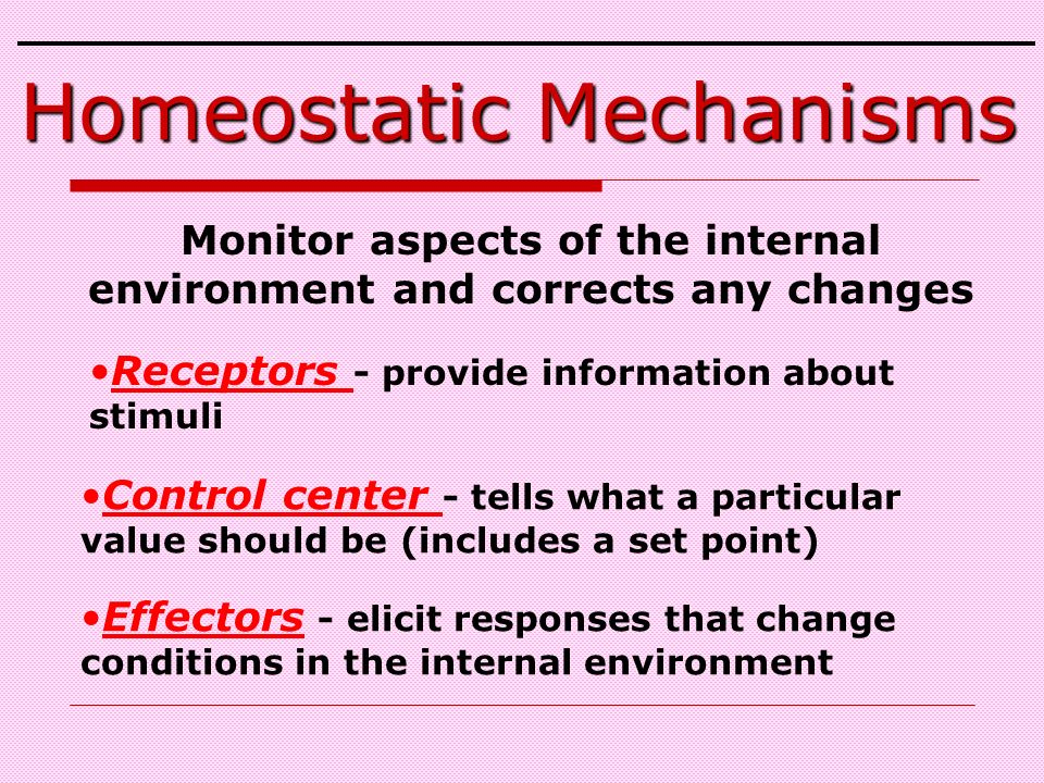 Monitor aspects of the internal environment and corrects any changes Homeostatic Mechanisms Receptors - provide information about stimuli Control center - tells what a particular value should be (includes a set point) Effectors - elicit responses that change conditions in the internal environment