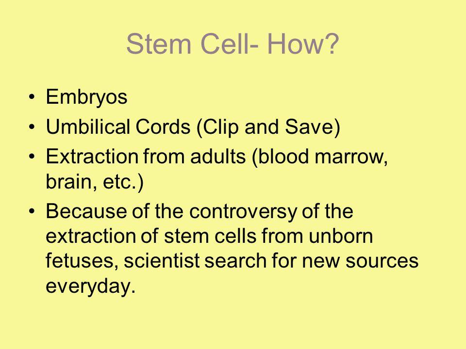 Stem Cell- How.
