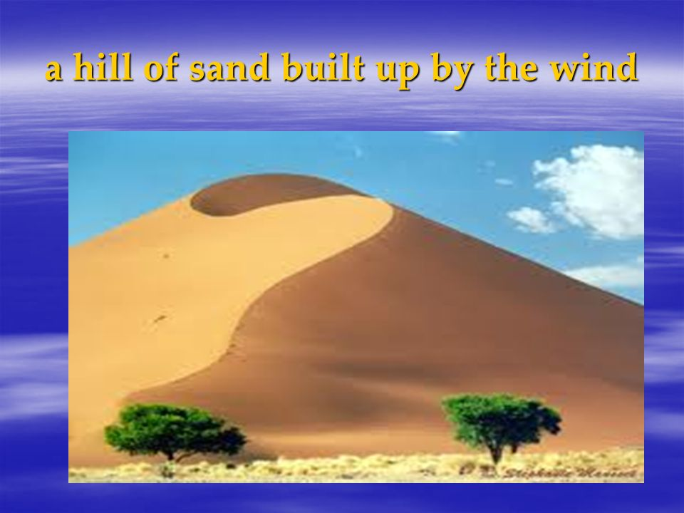 a hill of sand built up by the wind
