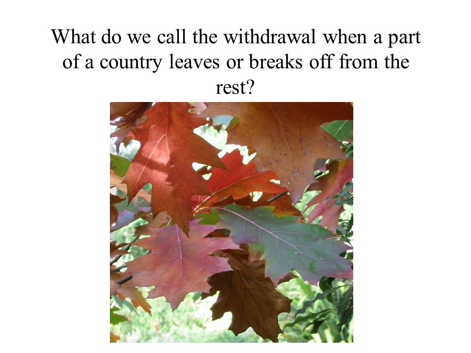 What do we call the withdrawal when a part of a country leaves or breaks off from the rest?