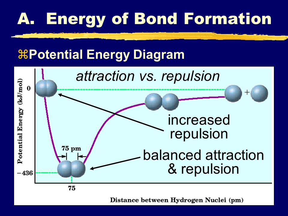 balanced attraction & repulsion increased repulsion attraction vs. repulsion A. Energy of Bond Formation zPotential Energy Diagram