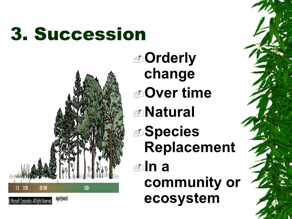 BOTH PRIMARY & SECONDARY have these Succession communities : 1.Pioneer species 2.