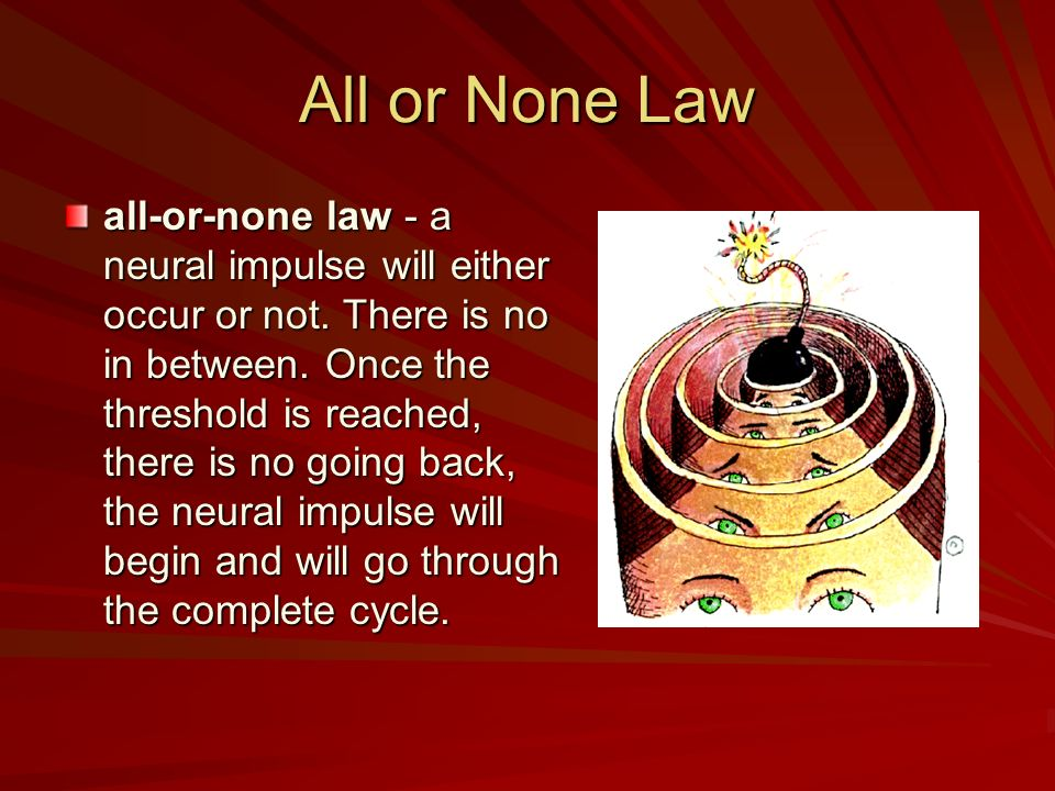 All or None Law all-or-none law - a neural impulse will either occur or not. There is no in between. Once the threshold is reached, there is no going