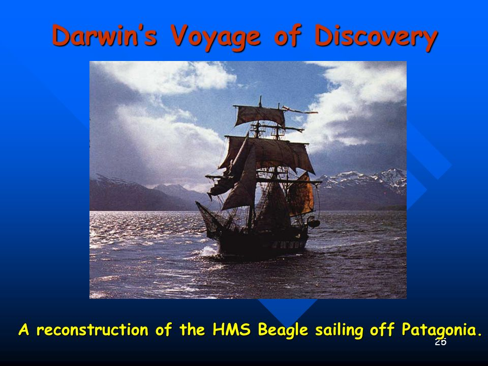 25 A reconstruction of the HMS Beagle sailing off Patagonia. Darwins Voyage of Discovery
