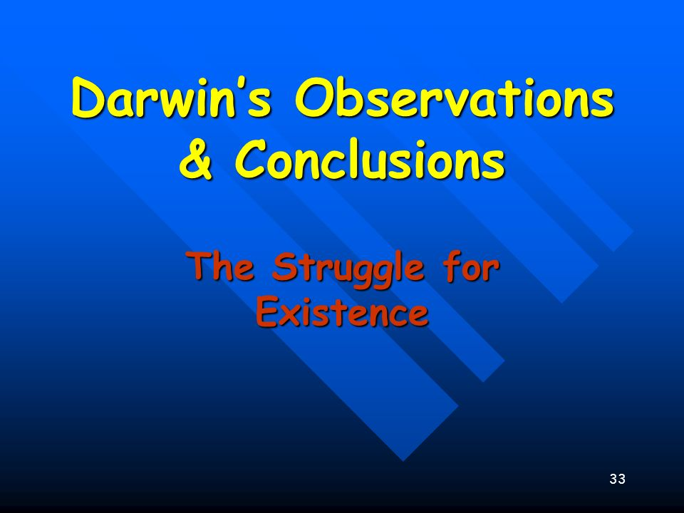 33 Darwins Observations & Conclusions The Struggle for Existence
